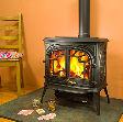Franco Belge Ardennes 15kW stove
