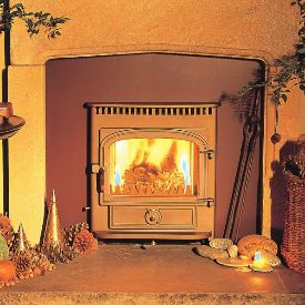 Clearview vision insert stove